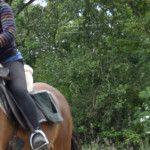 Bannière cheval rando