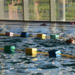 Piscine // Inscriptions leçons de natation enfants